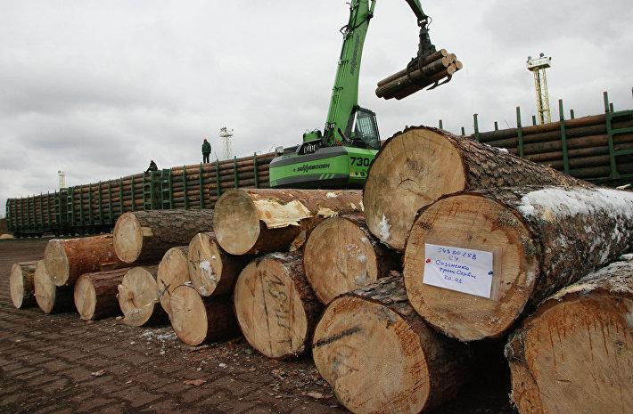 Уже через год в России могут разрешить строительство многоквартирных домов из дерева которые превышают три этажа