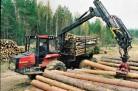 Новосибирская область: на севере построят два завода