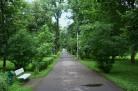 Новосибирск: «зелёным зонам» написали сценарии