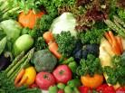 Новый комплекс обеспечит новосибирцев свежими овощами