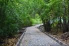 Парку «Бугринская роща» дадут «вторую жизнь»