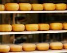 Сырное производство планируют запустить в Новосибирской области