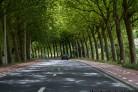 Безопасные дороги: в Новосибирске проект выполнили на 71%