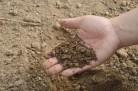 Глава сельсовета ответит за хищение земель в НСО