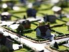 Публичные слушания: градостроительство будут обсуждать по новой схеме