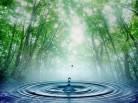 «Чистая вода»: есть претензии к эффективности