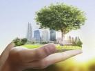 Городская среда: новосибирцы подали 3,5 тысячи предложений