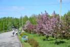 Городская среда в Бердске: начата сдача объектов