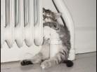 Плата за отопление: размер уточнят