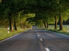 Строительство дорог: программа под контроль депутатов