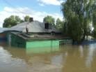 Бердск: подтопление остановят?