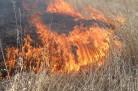 Семь домов сгорело при пожаре