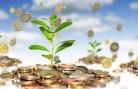 Инвестиции в НСО: представлены два новых проекта
