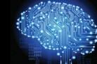 Цифровые технологии: сети будут развивать по соглашению